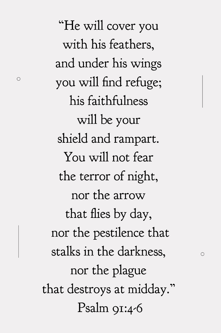 """He will cover you with his feathers, and under his wings you will find refuge; his faithfulness will be your sheild and rampart. You will not fear the terror of night, nor the arrow that flies by day, nor the pestilence that stalks in the darkness nor the plague that destroys at midday."" Psalm 91:4-6"