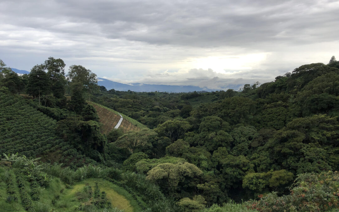 San José, Costa Rica 2019